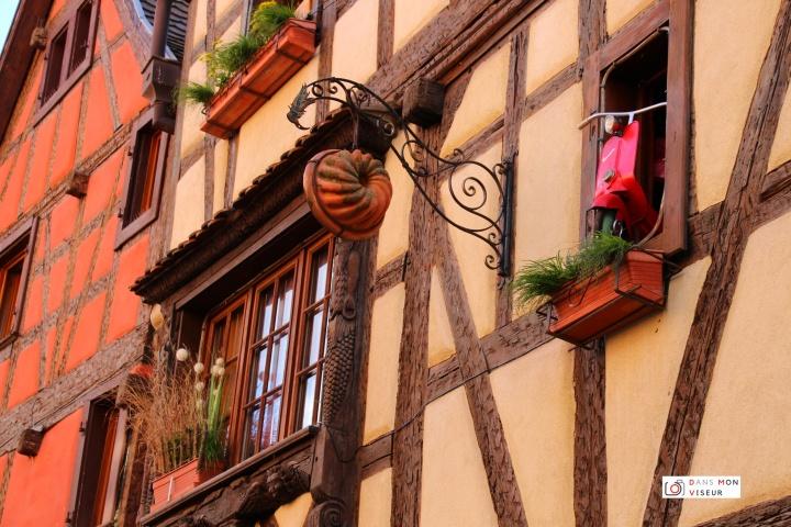 Mes 5 bonnes raisons de visiterl'Alsace